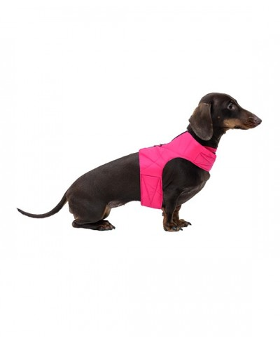 Red quilted harness