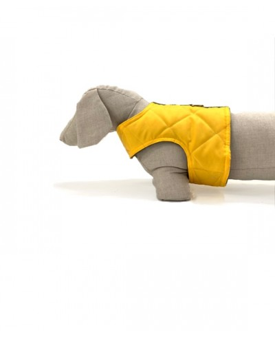 Yellow quilted dog harness