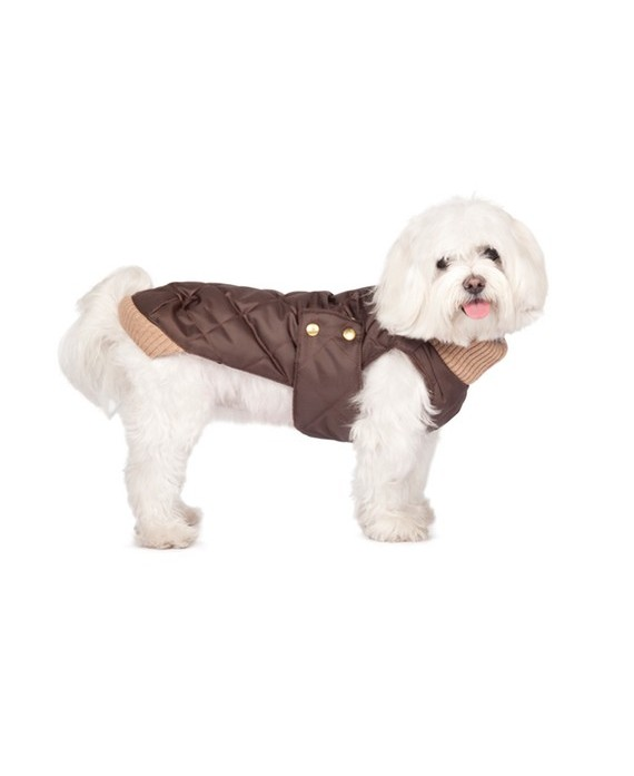 Choco waterproof coat with knit collar- Simon Choco